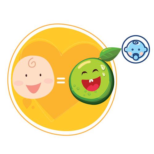thai nhi tuần 11 có kích thước nhỏ như trái chanh