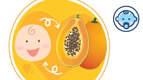 thai nhi tuần 22 đã to bằng một trái đu đủ