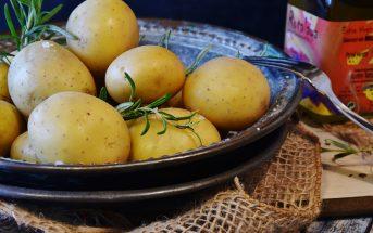 Khoai tây là nguồn tinh bột bổ dưỡng, lành mạnh cho mẹ bầu 6 tháng