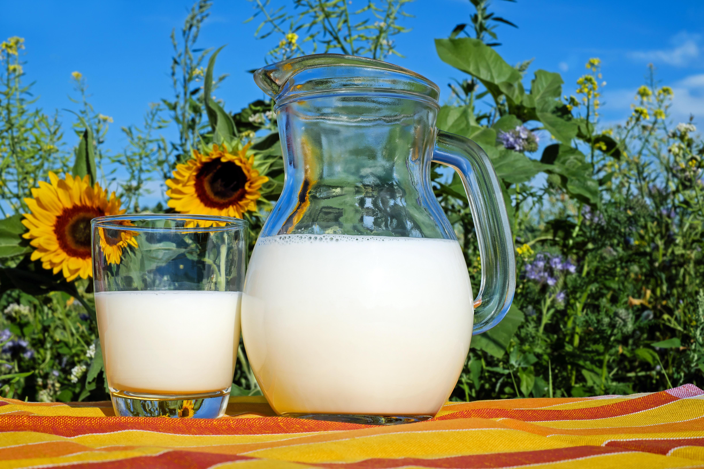 Sữa là nguồn dinh dưỡng dồi dào cho bà bầu tháng đầu