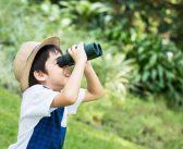 Các phương pháp dạy trẻ thông minh sớm cực kỳ hiệu quả
