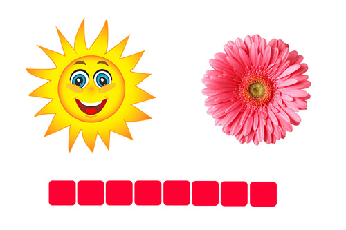 Sun + Flower = Sunflower (hoa hướng dương)