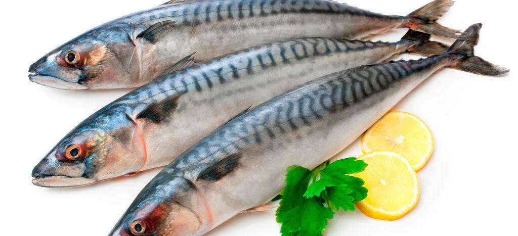 Không nên chiên cá quá cháy để tránh lượng protein và các giá trị dinh dưỡng khác mất đi