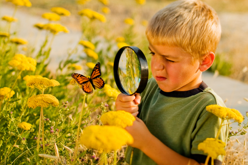 Khám phá thế giới giúp trẻ tư duy logic về mỗi quan hệ giữa các sự vật, hiện tượng