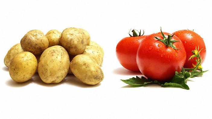 Cách nấu cháo cho bé tốt nhất là tránh kết hợp cà chua và khoai tây