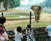 TOP 5 khu vui chơi cho bé ở Hà Nội nên đi nhất