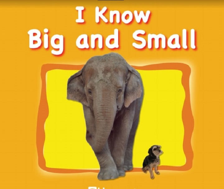 Sách tiếng anh I Know Big And Small