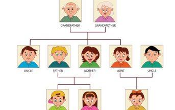 từ vựng chủ đề gia đình