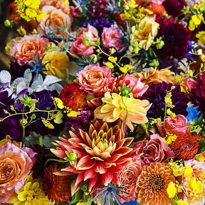 flowers english vocabulary
