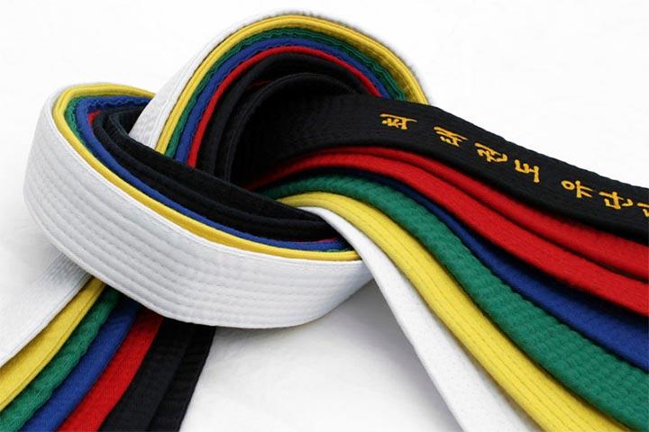 cấp độ đai võ taekwondo