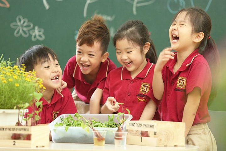 trường tiểu học quốc tế hcm việt úc vas