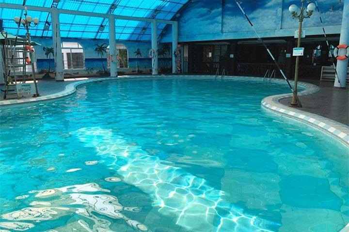 trung tâm dạy bơi t-swimming